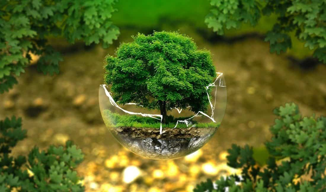 Should monetary policy take account of climate consideration?